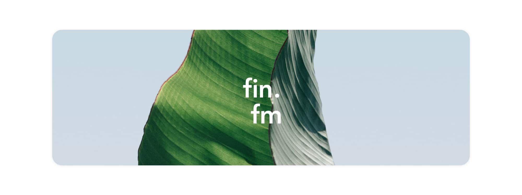 finfm